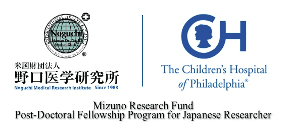 Mizuno Research Fund Post-Doctoral Fellowship Program for Japanese Researcher